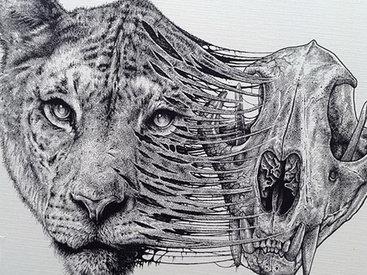 Детализированные карандашные рисунки художника Пола Джексона - ФОТО