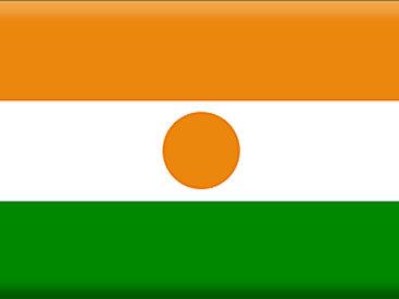 В Нигере гиппопотам потопил лодку со школьниками, 12 жертв