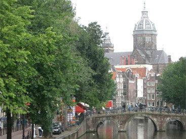 Власти Нидерландов уничтожат 8 тыс. уток
