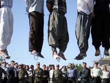 В Иране отменили публичные казни