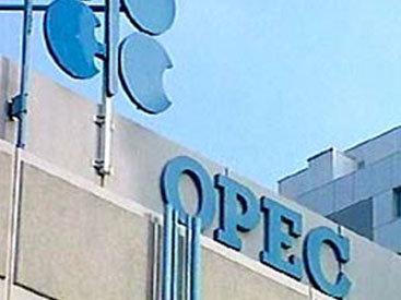 ОПЕК опубликовала прогноз по нефти до 2040 года