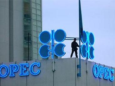 Минэнерго США рассчитывает, что ОПЕК+ продлит сокращение добычи нефти на весь 2020 год