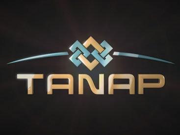 Названы сроки сдачи в эксплуатацию TANAP