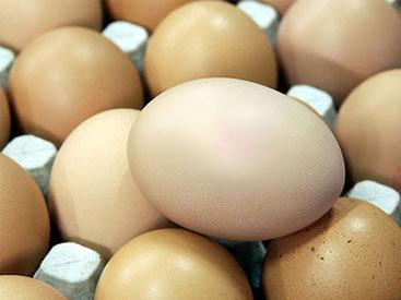 18 чиновников отправлены за решетку за кражу 8 млн. яиц