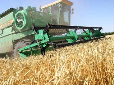 Фермеров застрахуют по-турецки