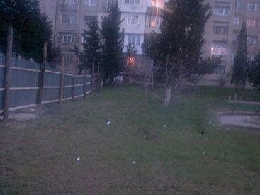 Жителей бакинской многоэтажки лишили отдыха
