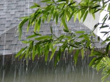 """""""Воскресное чтиво"""" на Day.Az: Стихи наших читателей. """"Весенний дождь"""""""