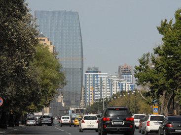 Они безнаказанно загаживают центр Баку – РЕПЛИКА - ФОТО
