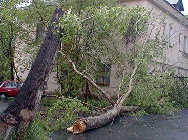 Кошмарные последствия урагана в Газахе