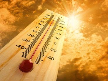 Аномальная жара убивает жителей Египта
