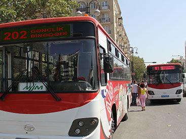 На электронной карте стал доступен маршрут автобусов