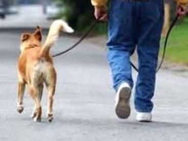 От диабета можно уйти пешком