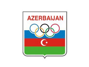 НОК Азербайджана ответил шведскому провокатору