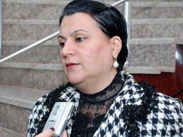 """Парламентарий: """"Армянская сторона не может осознать действительность"""""""