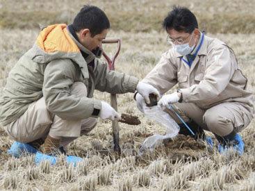 По аварии на японской АЭС проведут новое расследование