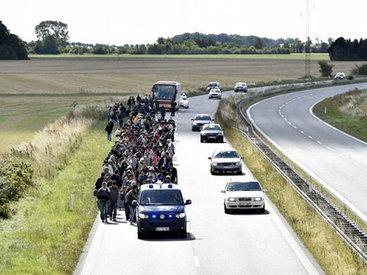 Дания вернула беженцев Германии