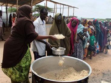 В ООН назвали причины нехватки еды во всем мире
