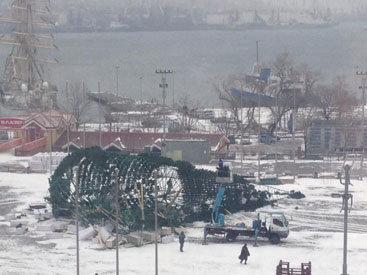 Главную елку Владивостока сдуло ветром