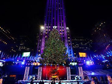 В США зажглась главная рождественская елка страны - ФОТО