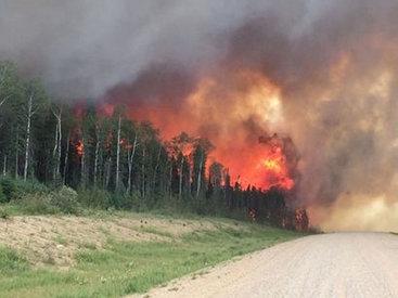 Мощные лесные пожары в Канаде, идет эвакуация - ФОТО