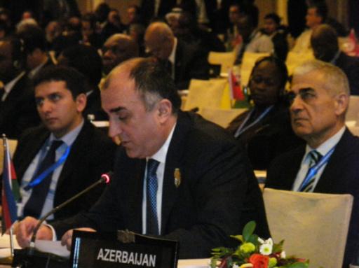 Глава МИД о новой платформе для доведения до мира позиции Азербайджана - ФОТО