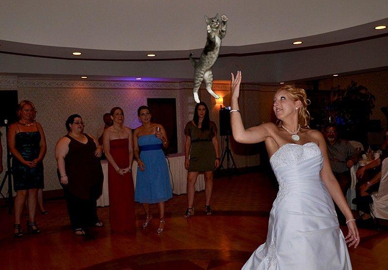 Букет невесты картинки смешные, открытки