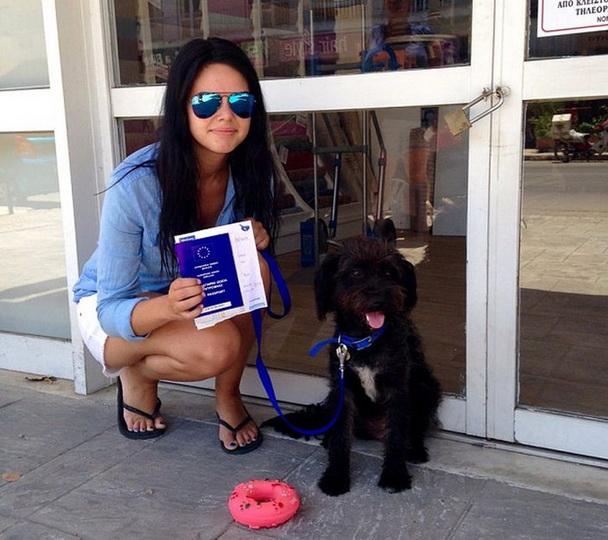 Женщина приютила бездомную собаку, которая спасла ее жизнь - ФОТОСЕССИЯ
