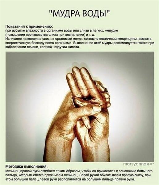 МУДРЫ (картинки) Yoga_dlya_palcev_425612_005