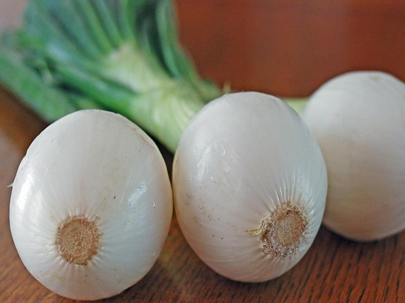 فوائد اكل البصل الاخضر يوميا