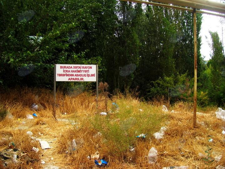 Этот зеленый уголок столицы оказался под угрозой - ФОТО
