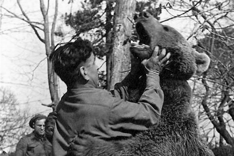 Войтек: история боевого медведя - ФОТОСЕССИЯ